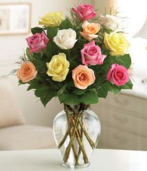 DZ ASSORTED ROSES